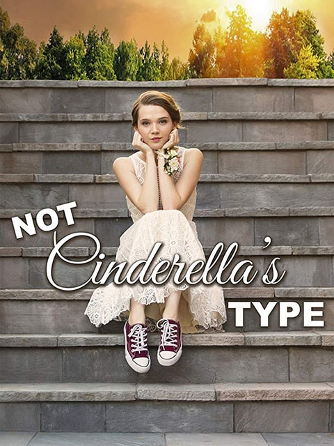 دانلود فیلم Not Cinderella's Type 2018